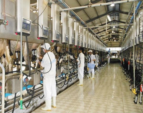 Thông báo tuyển dụng nông nghiệp tỉnh Hokkaido